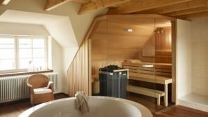 Sauna met glazen voorzijde 1